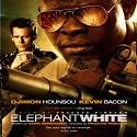 Elephant_White